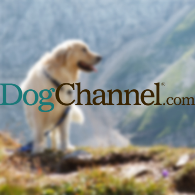 Dog Channel Hiking Aug 24 2014