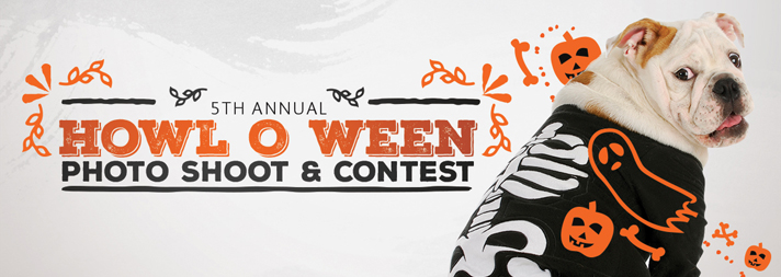 Fitdog Sports Club Blog_Howl-o-ween 2015