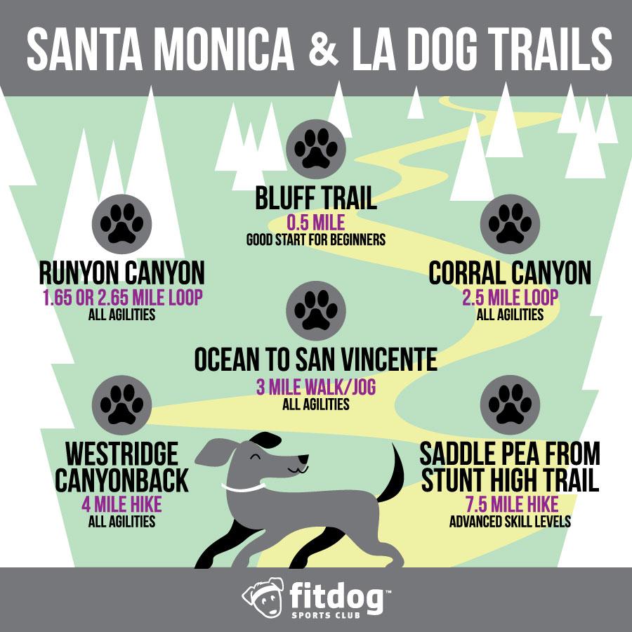 Santa monica dog trails fitdog sports club for Dog daycare santa monica