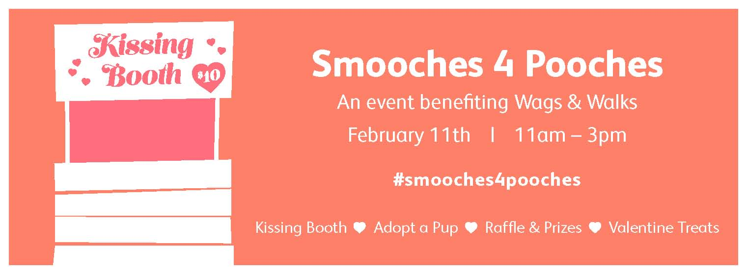 Fitdog Sports Club_Dog Blog_Smooches 4 Pooches