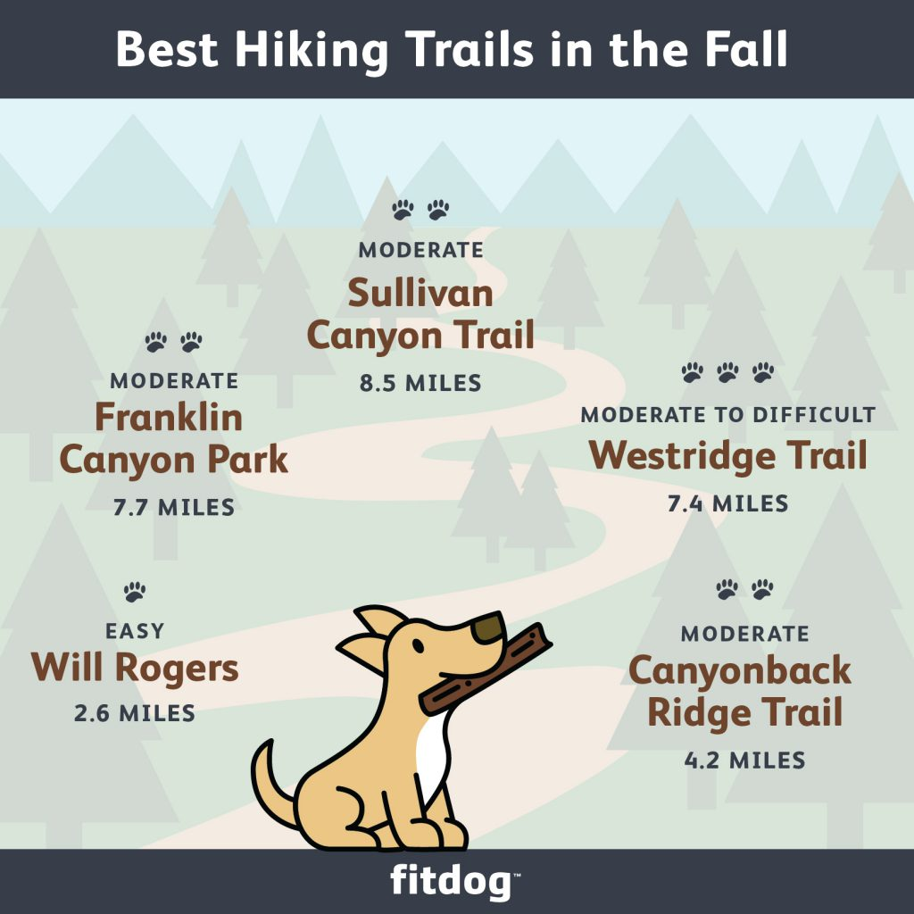 best fall hiking trails in Los Angeles