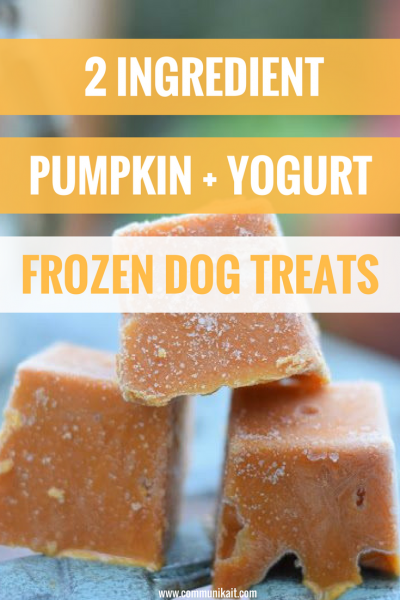 pumpkin benefits dogs