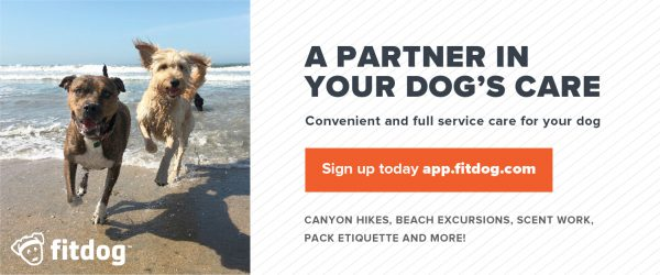 Join Our Pack | Fitdog Blog