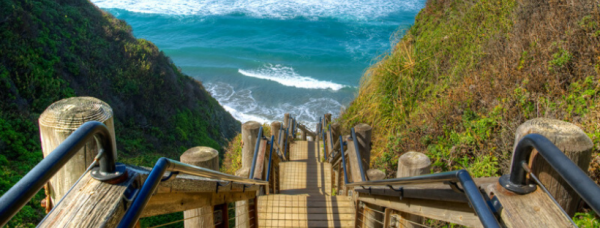 Sand Dollar Beach Stairs | Fitdog Blog