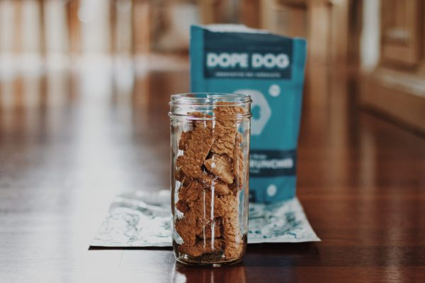 Calming Frozen Dog Treats for Summer - Fitdog Blog